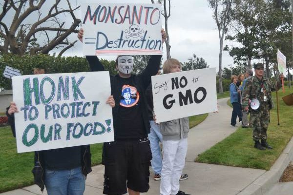 Monsanto in Our Backyard
